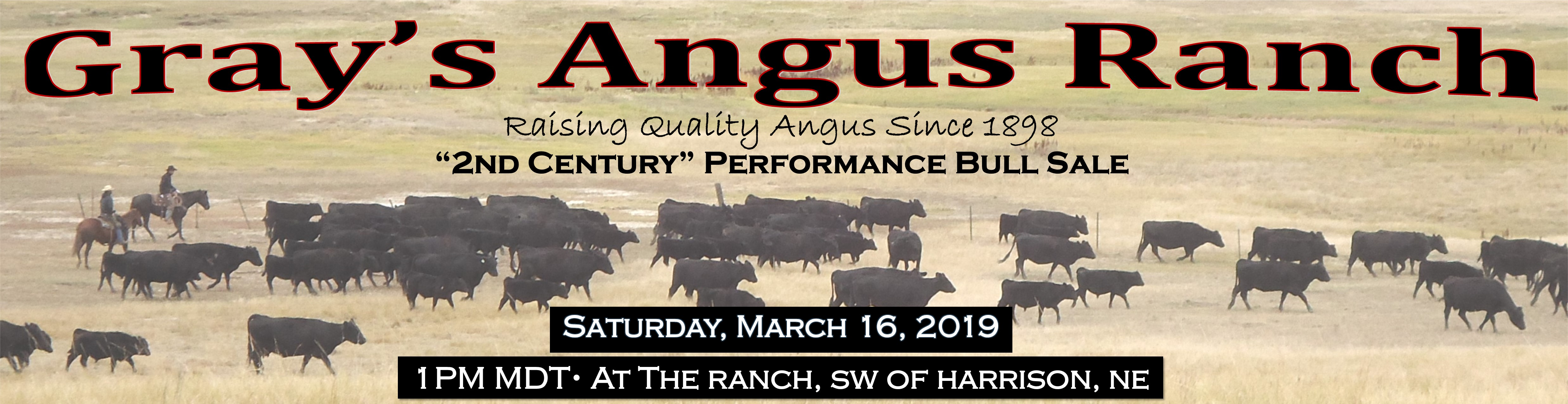 120 years of time tested genetics are found in Grays Angus Ranch Seedstock.  Join us for our 2nd Century Performance Bull Sale.