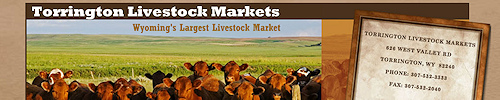 Torrington Livestock Markets is Wyoming's largest livestock market. We offer cattle for sale daily by several marketing options; live Cattle Auctions, Video Cattle Auctions & Private Treaty. All classes of cattle are for sale every Friday. Yearling & Calf sales are held every Wednesday, August through March. Special Bred Cow, Pair & Calf sales are held on Mondays as advertised throughout the fall.