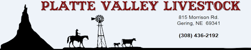 Welcome To Platte Valley Livestock: Gering Nebraska Livestock Market. Sales every Monday selling all classes of livestock feeder cattle as advertised.